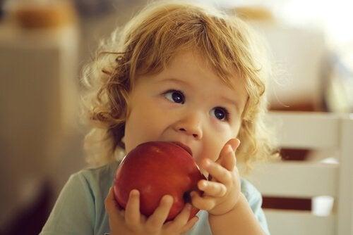 Anemiaa torjuvia ruokia lapselle
