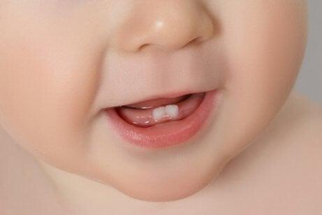 Vauvan ensimmäiset hampaat: kaikki mitä sinun tarvitsee tietää