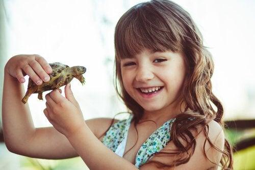 kilpikonna ja tyttö