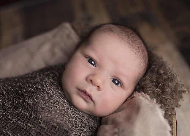 Vauvan aivot yllättävät
