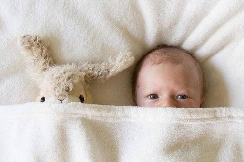 Vauvan näköaistin kehitys ensimmäisten elinkuukausien aikana