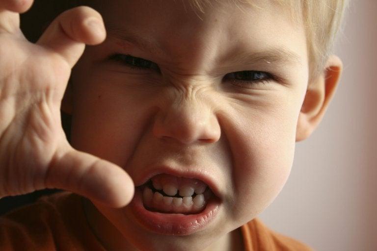 Miten lapsen raivo näkyy ja miten sitä voidaan hillitä?