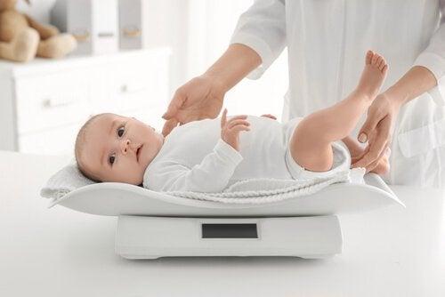 Vauvan painonhallinta 6 neuvon avulla