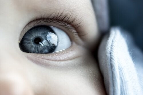 Miksi vauvat syntyvät sini- tai harmaasilmäisinä?