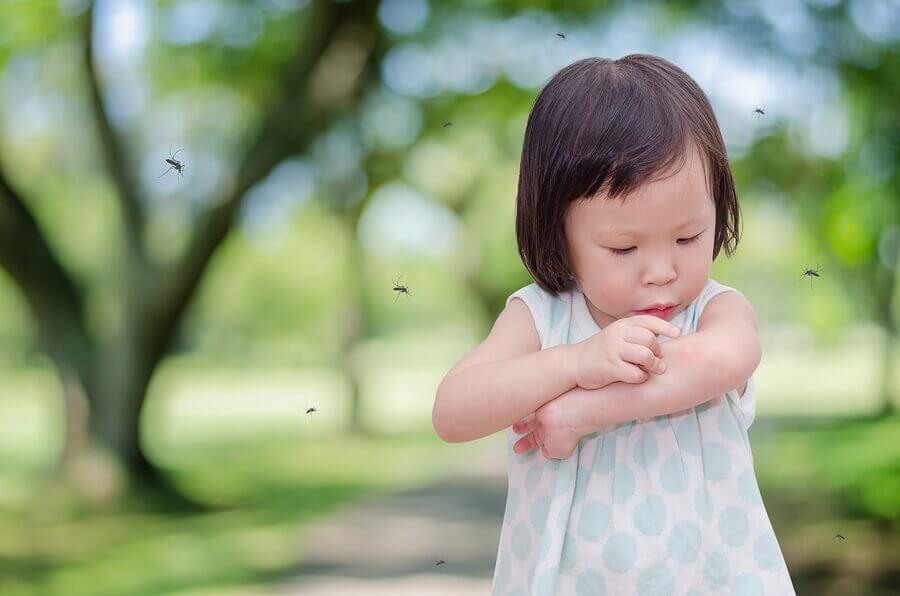 Miksi hyttyset pistävät aina minun lastani?