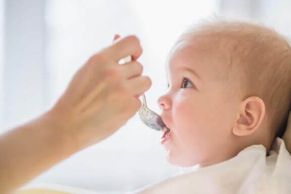 Voiko ja kannattaako vauvanruokaa säilöä?