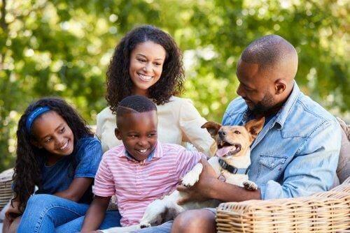 Perhettä koskevat lakisäädökset