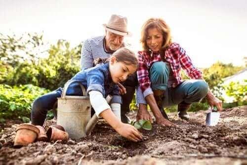 Perhettä koskevat lakisäädökset takaavat perheenjäsenten hyvinvoinnin