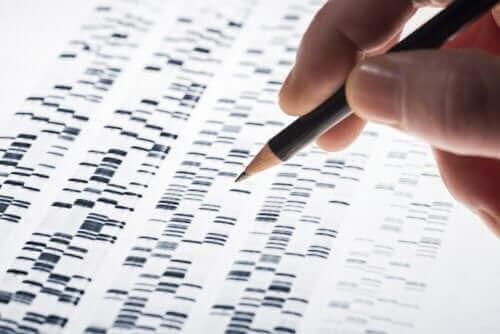 Raskaudenaikaiset geenitestit saattavat havaita mahdolliset geneettiset poikkeavuuden jo raskauden aikana