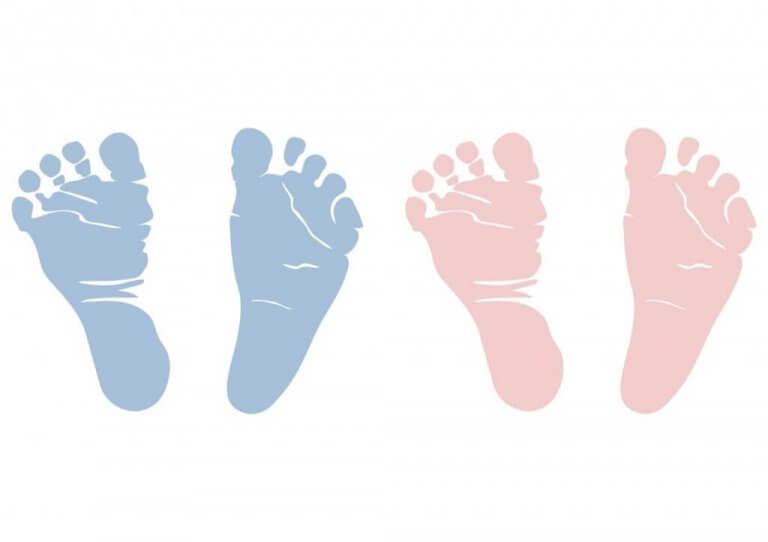 Ramzi-metodi vauvan sukupuolen selvittämiseksi