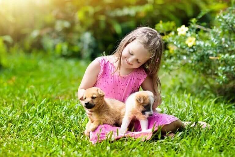 5 lemmikkiä maaseudulla asuville lapsille