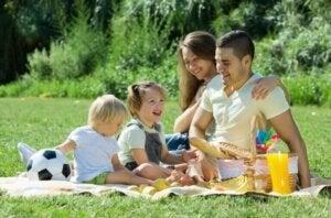 perheen yhteinen piknik