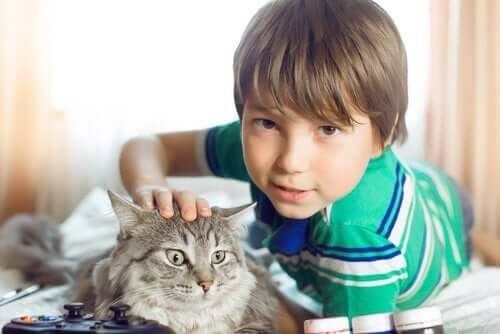 Miksi eläimet kiehtovat lapsia?