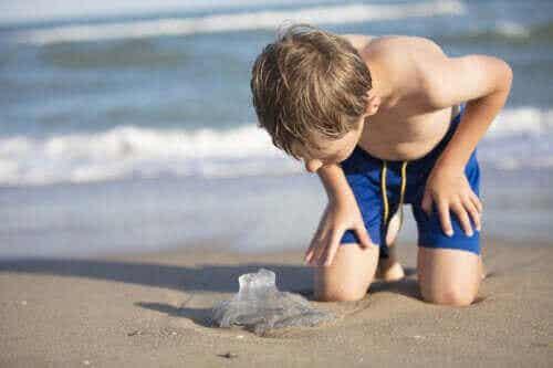 Kuinka toimia, jos meduusa pistää lasta?