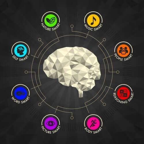 Moniälykkyysteoria ja lapsen eri älykkyyslajien kehittäminen