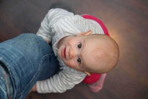 Lapsen emotionaalista kehitystä selittävät teoriat